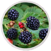 Blackberries 2 Round Beach Towel