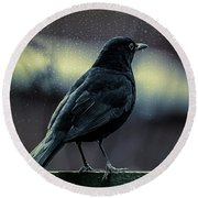 Blackbird Round Beach Towel