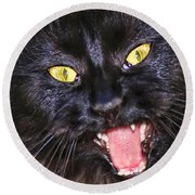 Round Beach Towel featuring the photograph Blackie by Geraldine DeBoer