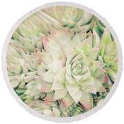 Round Beach Towel featuring the photograph Blanket Of Succulents by Ana V Ramirez
