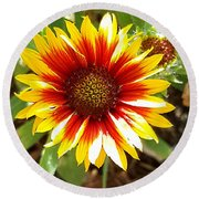 Blanketflower Round Beach Towel
