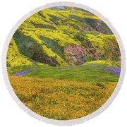 Blazing Star On Temblor Range Round Beach Towel