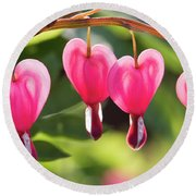 Bleeding Hearts Round Beach Towel by Skip Tribby