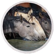 Blended Color Family Of Wild Horses Round Beach Towel