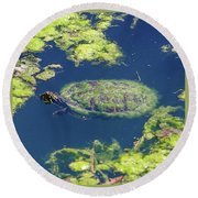 Round Beach Towel featuring the photograph Blending In Turtle by Raphael Lopez