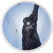 Round Beach Towel featuring the photograph Bliss Dancer by Lora Lee Chapman