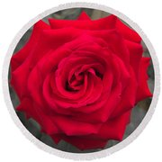 Blood Rose Round Beach Towel