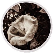 Bloom In Sepia Round Beach Towel