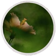 Round Beach Towel featuring the photograph Bloom Through The Bush by Debby Pueschel