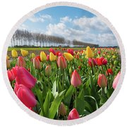 Blooming Holland Tulips Round Beach Towel