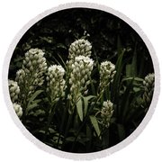 Round Beach Towel featuring the photograph Blooming In The Shadows by Marco Oliveira
