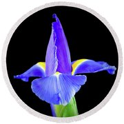 Blooming Iris 1318-1 Round Beach Towel