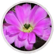 Blooming Pink Round Beach Towel