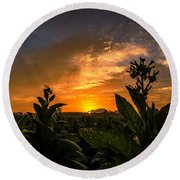 Blooming Tobacco Round Beach Towel