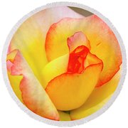 Blooming Yellow And Pink Rose Round Beach Towel by Teri Virbickis