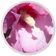Round Beach Towel featuring the photograph Blossom At Kirby Park by Christina Verdgeline