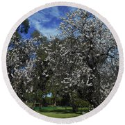 Round Beach Towel featuring the photograph Blossom Bomb by Mark Blauhoefer