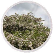 Blossoming Tree Round Beach Towel