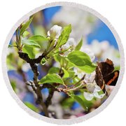 Blossoms And Butterfly Round Beach Towel