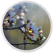 Blossoms Round Beach Towel by Betty-Anne McDonald