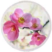 Round Beach Towel featuring the photograph Blossoms by Marion Cullen