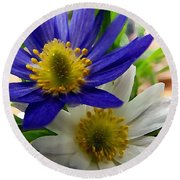 Blue And White Anemones Round Beach Towel