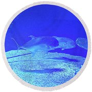 Blue Below Round Beach Towel