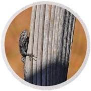 Round Beach Towel featuring the photograph Blue Bits by Al Powell Photography USA
