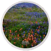 Round Beach Towel featuring the photograph Bluebonnets #0487 by Barbara Tristan