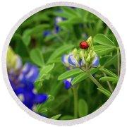Texas Blue Bonnet And Ladybug Round Beach Towel