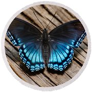 Blue Butterfly Round Beach Towel