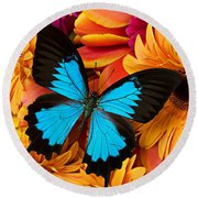 Blue Butterfly On Brightly Colored Flowers Round Beach Towel by Garry Gay