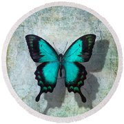 Blue Butterfly Resting Round Beach Towel