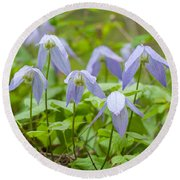 Round Beach Towel featuring the photograph Blue Clematis by Fran Riley