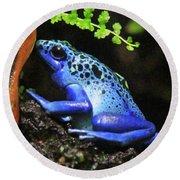 Blue Dart Frog Round Beach Towel