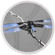 Blue Dragon Round Beach Towel