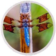 Blue Dragonfly Round Beach Towel