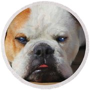 Blue-eyed English Bulldog - Painting Round Beach Towel