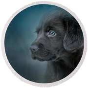 Blue Eyed Puppy Round Beach Towel