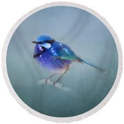 Blue Fairy Wren Round Beach Towel
