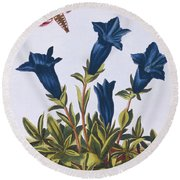 Blue Gentian  Trumpet Flower  Round Beach Towel by Pierre-Joseph Buchoz