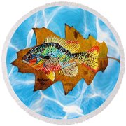 Blue Gill Round Beach Towel by Ralph Root