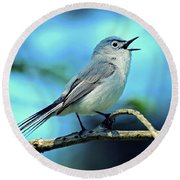 Round Beach Towel featuring the photograph Blue-gray Gnatcatcher by Rodney Campbell
