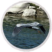 Round Beach Towel featuring the photograph Blue Heron by Ann E Robson