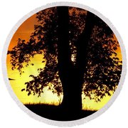 Round Beach Towel featuring the photograph Blue Heron At Sunrise by Sumoflam Photography