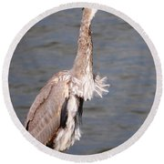 Round Beach Towel featuring the photograph Blue Heron Calling by Sumoflam Photography