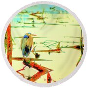Blue Heron Round Beach Towel by Dale Stillman