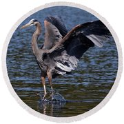 Blue Heron Dance Round Beach Towel