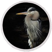 Blue Heron Gaze Round Beach Towel