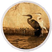 Blue Heron Shadow Round Beach Towel